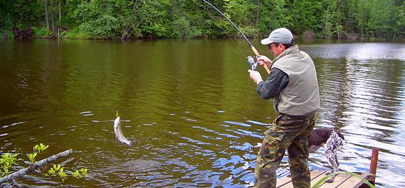 Платная рыбалка на зарыбленном водоеме в Подмосковье